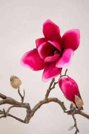 Kunstig magnolie - lyserød