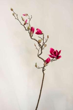 Kunstig magnoliegren