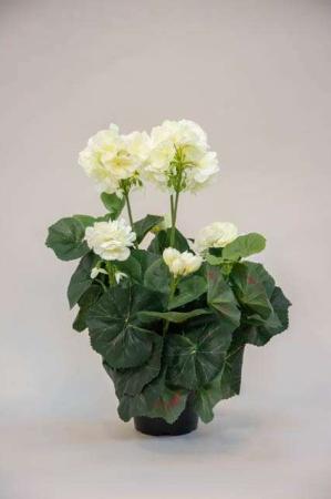 Kunstig pelargonia i potte - hvid
