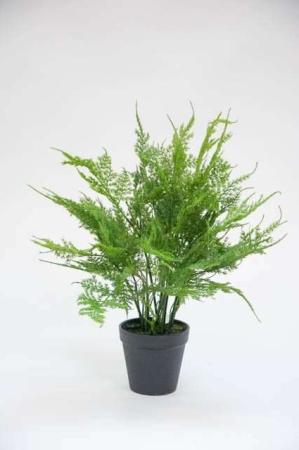 Kunstig grøn plante - bregne
