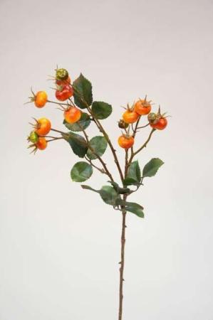 Kunstig hyben gren - Kunstig gren i efterårsfarver