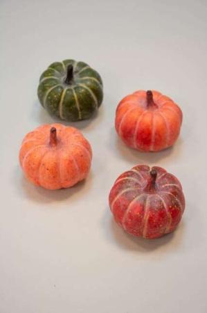 Pyntegræskar rund - Pyntegræskar 4 farver